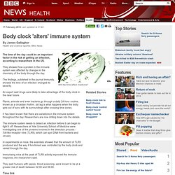 Body clock 'alters' immune system