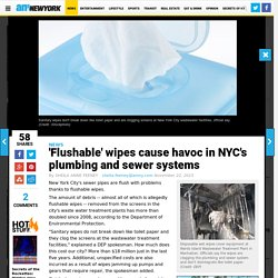 NYC's plumbing and sewer systems