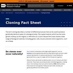 Cloning Fact Sheet