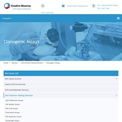 Clonogenic Assays - Creative Bioarray
