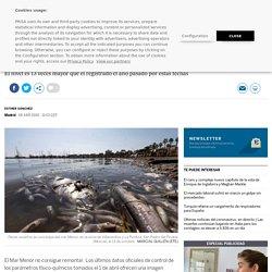 El aumento de clorofila en el Mar Menor amenaza con provocar una nueva crisis por falta de oxígeno
