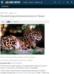 Clouded leopard declared extinct in Taiwan