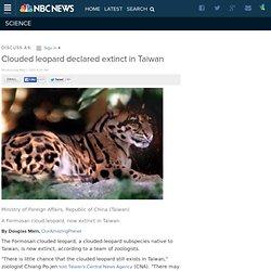 Clouded leopard declared extinct in Taiwan