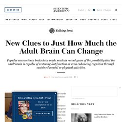 New Clues to Just How Much the Adult Brain Can Change