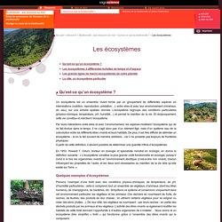 CNRS/sagascience - Les écosystèmes