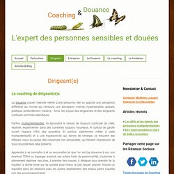 Coaching de Dirigeant - Coaching Adulte Surdoué Paris