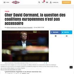 Cher David Cormand, la question des coalitions européennes n'est pas accessoire