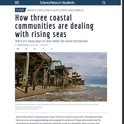 How three coastal communities are dealing with rising seas