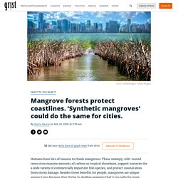 Mangrove forests protect coastlines. 'Synthetic mangroves' could do the same for cities.