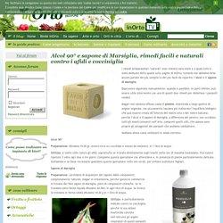Alcol 90° e sapone di Marsiglia, rimedi facili e naturali contro i afidi e cocciniglia