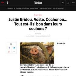 Justin Bridou, Aoste, Cochonou... Tout est-il si bon dans leurs cochons ?