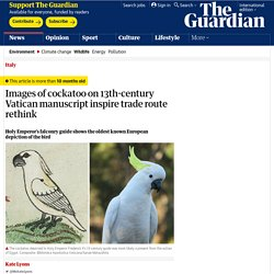 Images of cockatoo on 13th-century Vatican manuscript inspire trade route rethink