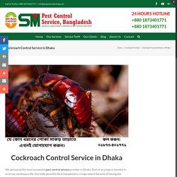 Top Pest Control Company in Bangladesh