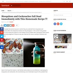 Mosquitoes and Cockroaches Fall Dead Immediately with This Homemade Recipe !!!