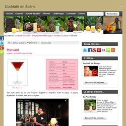 Cocktails en Scène - Blog Apéritif et Mixologie