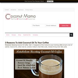 Coconut Oil Coffee (3 Reasons To Drink It Daily)