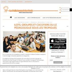 Ilots, groupes et cocotiers ou le pédagogique sous les tropiques
