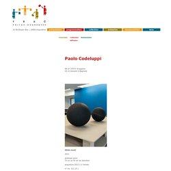 Paolo Codeluppi, collection FRAC Poitou-Charentes