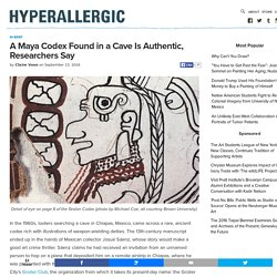A Maya Codex Found in a Cave Is Authentic, Researchers Say
