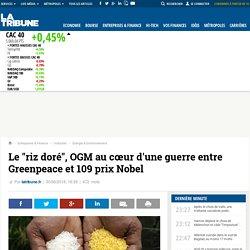 """LA TRIBUNE 30/06/16 Le """"riz doré"""", OGM au cœur d'une guerre entre Greenpeace et 109 prix Nobel"""