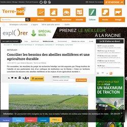 TERRE-NET 14/01/15 InterApi - Concilier les besoins des abeilles mellifères et une agriculture durable