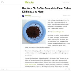 Use Your Old Coffee Grounds to Clean Dishes, Kill Fleas, and Mor
