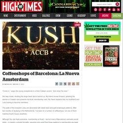Coffeeshops of Barcelona: La Nueva Amsterdam