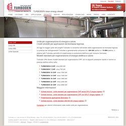 Prodotti per cogenerazione di energia elettrica e calore (CHP)