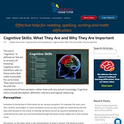 Cognitive Skills: What They Are and Why They Are Important