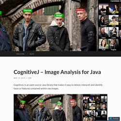 CognitiveJ – Image Analysis for Java
