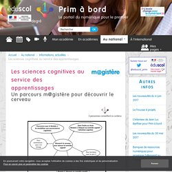 Les sciences cognitives au service des apprentissages - Prim à bord