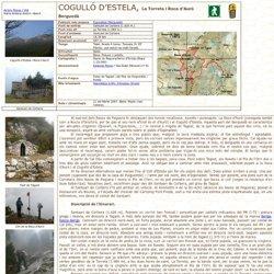 Cogulló d'Estela, La Torreta i Roca d'Auró