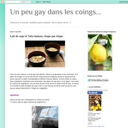 Un peu gay dans les coings...: Lait de soja et Tofu maison, étape par étape