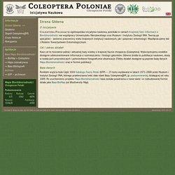 Coleoptera Poloniae - Chrząszcze Polski - Strona Główna