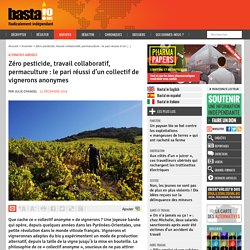 Zéro pesticide, travail collaboratif, permaculture : le pari réussi d'un collectif de vignerons anonymes - Basta !