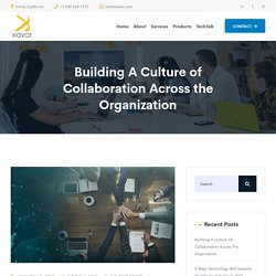 Building A Culture of Collaboration Across the Organization