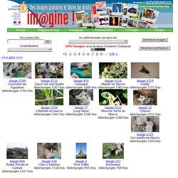 Im@gine! : banque d'images libres de droits pour l'éducation