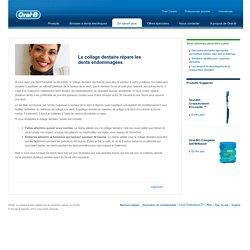 Le collage dentaire répare les dents endommagées - Oral-B