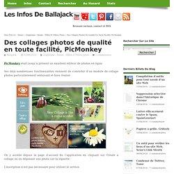 Des collages photos de qualité en toute facilité, PicMonkey