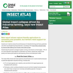 Global insect collapse driven by industrial farming, says new 'Insect Atlas'