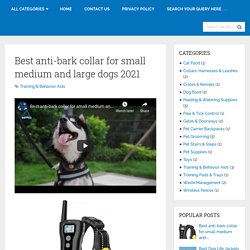 Best Anti-bark Collar For Small Medium And Large Dogs 2021