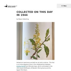 Collected on this day in 1944 - Carnegie Museum of Natural History