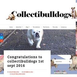 Congratulations to collectibulldogs 1st sept 2016