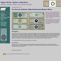 Algae World: The Grunow Collection of diatoms in Vienna (Naturhistorisches Museum Wien)
