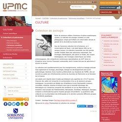 Collection de zoologie -Université Pierre et Marie CURIE