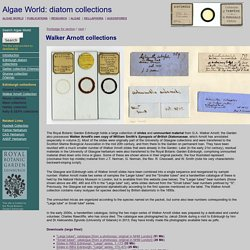 Algae World: Collections of diatoms in the Royal Botanic Garden Edinburgh: G.A. Walker Arnott slides and unmounted material
