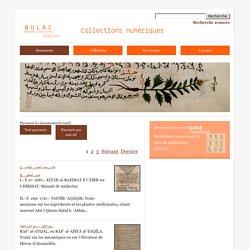 les collections numériques de la Bulac
