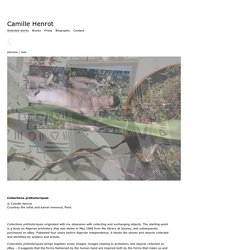 Camille Henrot - Selected works : Collections préhistoriques