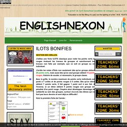 Collège anglais ILOTS BONIFIES