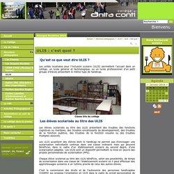 ULIS : c'est quoi ? - Collège Anita Conti - Lorient